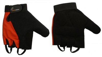 Indoor handschoenen - L - RevaraSports